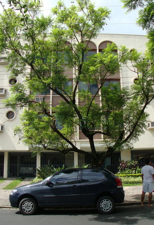San Antônio
