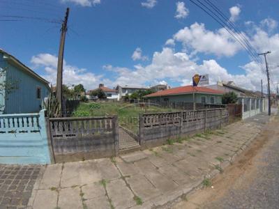 Orfãs, Ponta Grossa - PR