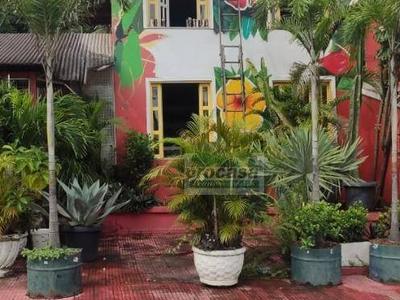 Flores, Manaus - AM