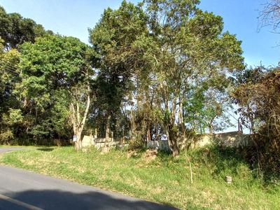 Mercês, Curitiba - PR