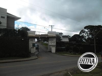 Abranches, Curitiba - PR
