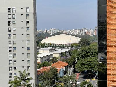Paraíso, São Paulo - SP