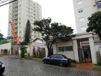 Bosque da Saúde, São Paulo - SP
