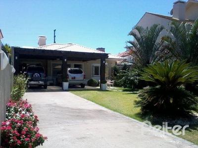 Girassol, Capão da Canoa - RS
