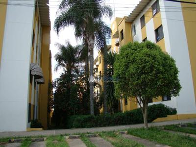 Bosque dos Eucaliptos, São José dos Campos - SP