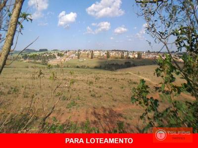 Neves, Ponta Grossa - PR