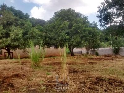Campo Novo, Bragança Paulista - SP