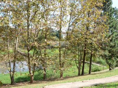 Parque São Domingos, São Paulo - SP