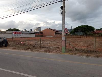Lídia Duarte, Balneario Camboriu - SC