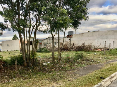 Borda Do Campo, São José dos Pinhais - PR