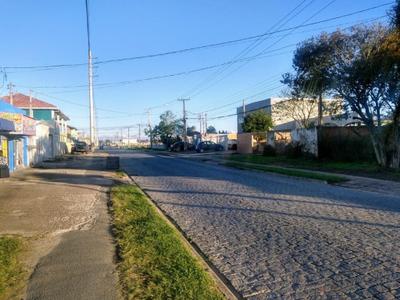 Ipê, São José dos Pinhais - PR