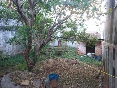árvore Grande, Sorocaba - SP
