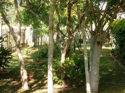 Bolaxa, Rio Grande - RS