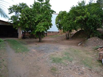 Castelo, Amparo - SP